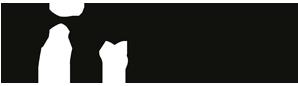 AILoveRunning - Evento solidale sportivo organizzato ogni anno da AIL Firenze